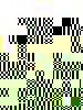 13b8207c90e16503d36d765735e05b47c2ef05f8-364-2