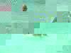 3746066440962d60c60ac33f67ed48cedb428a37-1982-2