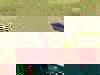 Af9150ad6f09bda95106c035655c84db84768bd8-1134-1
