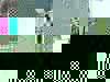 Ba278f81941a596e0fdcb319a5343deab7a127a4-1925-2