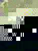 C30b821068945bbf0254c08bed53d2db1395ff17-6449-1