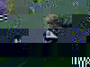 F2161a3a9d38862d546002cf663c549f5101fe87-6876-1
