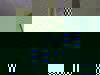 Fef9babe345350c6bed700c145c115d68a7d0d05-3162-1