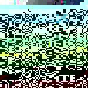 Photo_042b2bec7e11f5a80810aeb44cee9dc6bcfd576e-741-1