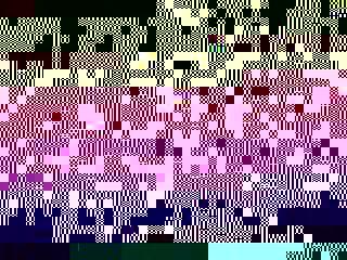 Photo_056cbea8e5e2d6977a3ae483aafa8bc80982a3b6-5632-1