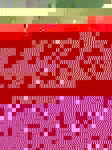 Photo_3103b6994d930d1da670feda49effc16242eebaa-1889-1