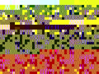 Photo_3cae3c1e1fd8fc1a7ed061802aad894d0c22d53c-2890-1