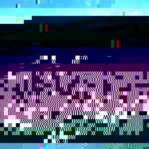 Photo_5f50a84c1fa3bcff146405017f36aec1a10a9e38-4701-1