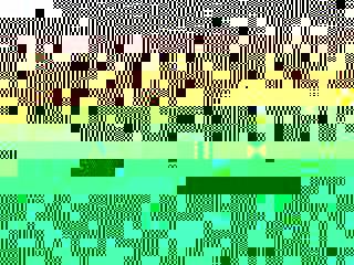 Photo_6884049c7f60c21b6952b529de56f7f048802c8c-4084-1