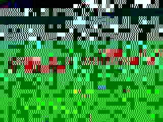 Photo_85021017cdbcd663acc000103659cb1160c2ee0a-1774-1
