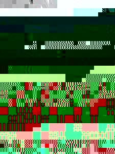 Photo_ad7661d1ab17cf57cd414db75c6a9442ebeac03c-3135-1