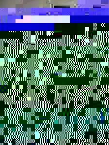 Photo_b686c1c2970e4d7e8c549902bac6f72e6e020210-6299-2