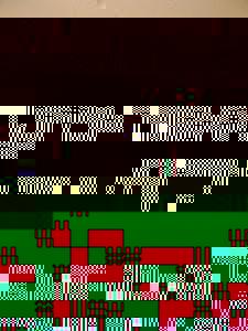 Photo_c0c1fc2d3cdb567c288f6201b99ae8ee9655fcbf-1746-2
