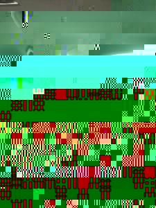 Photo_user_105082030efa1f68bda53fe5d6bc30f03e220bf49d391