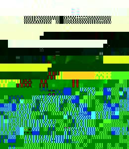 Photo_user_10652485a4b40ef6ccd37db5deb7e42217af7e55b486b