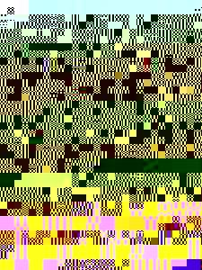Photo_user_11661c1865e5a03a957299cb1b5d6d37d4a69763d3d78