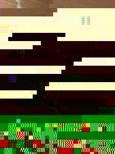 Photo_user_8022a9c75cbd83a96cec531cf1ed660cb0cc666f4ed7