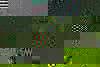 User_103622f539ef88a070ad2d07e1844eab76f42f3b00d10