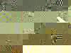 User_1173848e3cdab0d138ebf78942047331ba3822fc60bfa